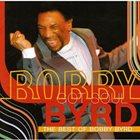 BOBBY BYRD Bobby Byrd Got Soul: The Best of Bob album cover