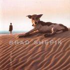 BRAD SHEPIK The Well album cover