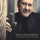 BRIAN BROMBERG Thicker Than Water album cover