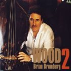 BRIAN BROMBERG Wood2 album cover