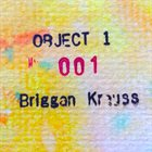 BRIGGAN KRAUSS Object #1 album cover
