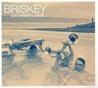 BRISKEY Cucumber Lodge album cover