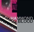 BRUNO MARINI Hammond Blood album cover