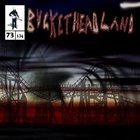 BUCKETHEAD Final Bend of the Labyrinth album cover