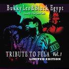BUKKY LEO Bukky Leo & Black Egypt : Tribute to Fela album cover