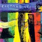 CAETANO VELOSO Livro album cover