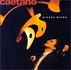 CAETANO VELOSO Prenda Minha album cover