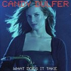 CANDY DULFER What Does It Take album cover