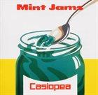 CASIOPEA Mint Jams album cover