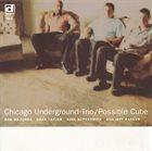 CHICAGO UNDERGROUND DUO / TRIO /  QUARTET - CHICAGO / LONDON UNDERGROUND Chicago Underground Trio : Possible Cube album cover