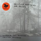 CHRISTIAN WALLUMRØD Christian Wallumrød & Trondheim Jazz Orchestra : Untitled Arpeggios and Pulses album cover