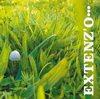 CHRISTOFER BJURSTRÖM Extenz'O album cover