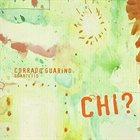 CORRADO GUARINO Corrado Guarino Quartetto : Chi? album cover