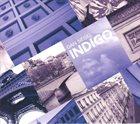 DAN SIEGEL Indigo album cover