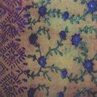 DANIEL CARTER Daniel Carter / Ravi Padmanabha : Nivesana album cover