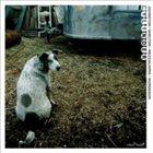 DARREN JOHNSTON Cylinder (with Aram Shelton, Lisa Mezzacappa, Kjell Nordeson ) album cover