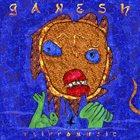 DAVE FLIPPO Ganesh album cover