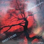 DAVE LIEBMAN Sweet Fury album cover