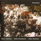 DAVE LIEBMAN We 3: Amazing album cover