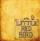 DAVE MATTHEWS BAND Little Red Bird album cover