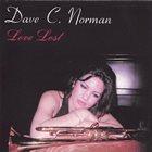 DAVE NORMAN Love Lost album cover