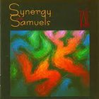DAVE SAMUELS Synergy Percussion With Dave Samuels : Synergy With Samuels album cover