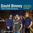 DAVID BINNEY The Time Verses album cover
