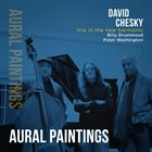 DAVID CHESKY Trio in the New Harmonic : Aural Paintings album cover