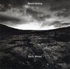 DAVID DARLING Dark Wood album cover