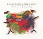 DAVID FRIESEN David Friesen and Glen Moore : Bactrian album cover