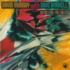 DAVID MURRAY Windward Passages (With Dave Burrell) album cover
