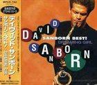 DAVID SANBORN Sanborn Best ! : Dreaming Girl album cover