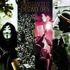 DAVID SANCIOUS Eyes Wide Open album cover