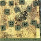 DEAD CAT BOUNCE Lucky By Association album cover