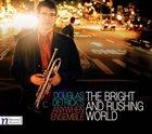 DOUGLAS DETRICK The Bright and Rushing World album cover
