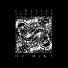DR. MINT Kingsize Sessions album cover