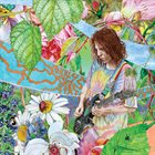 ED WYNNE (GUITAR) Shimmer Into Nature album cover