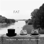 FAT (THE FABULOUS AUSTRIAN TRIO) FAT album cover