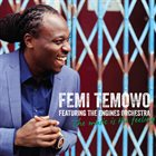 FEMI TEMOWO Femi Temowo featuring The Engines Orchestra ‎: The Music Is The Feeling album cover