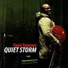 FEMI TEMOWO Quiet Storm album cover