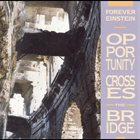 FOREVER EINSTEIN Opportunity Crosses The Bridge album cover