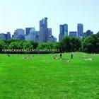 FRANCK AMSALLEM Summertimes album cover