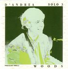 FRANCO D'ANDREA Solo 3 - Woods album cover