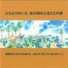 FUMIO ITABASHI Mix Dynamite Live At The Pitt Inn 2011.1.1 album cover