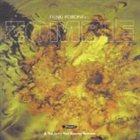 FUNKI PORCINI Zombie album cover
