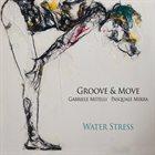 GABRIELE MITELLI Gabriele Mitelli & Pasquale Mirra : Water Stress album cover