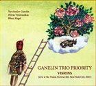 GANELIN TRIO/SLAVA GANELIN Visions album cover