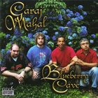 GARAJ MAHAL Blueberry Cave album cover