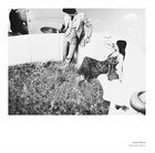 GARD NILSSEN Drumming Music album cover