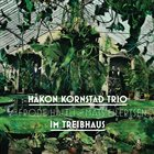 HÅKON KORNSTAD Im Treibhaus album cover